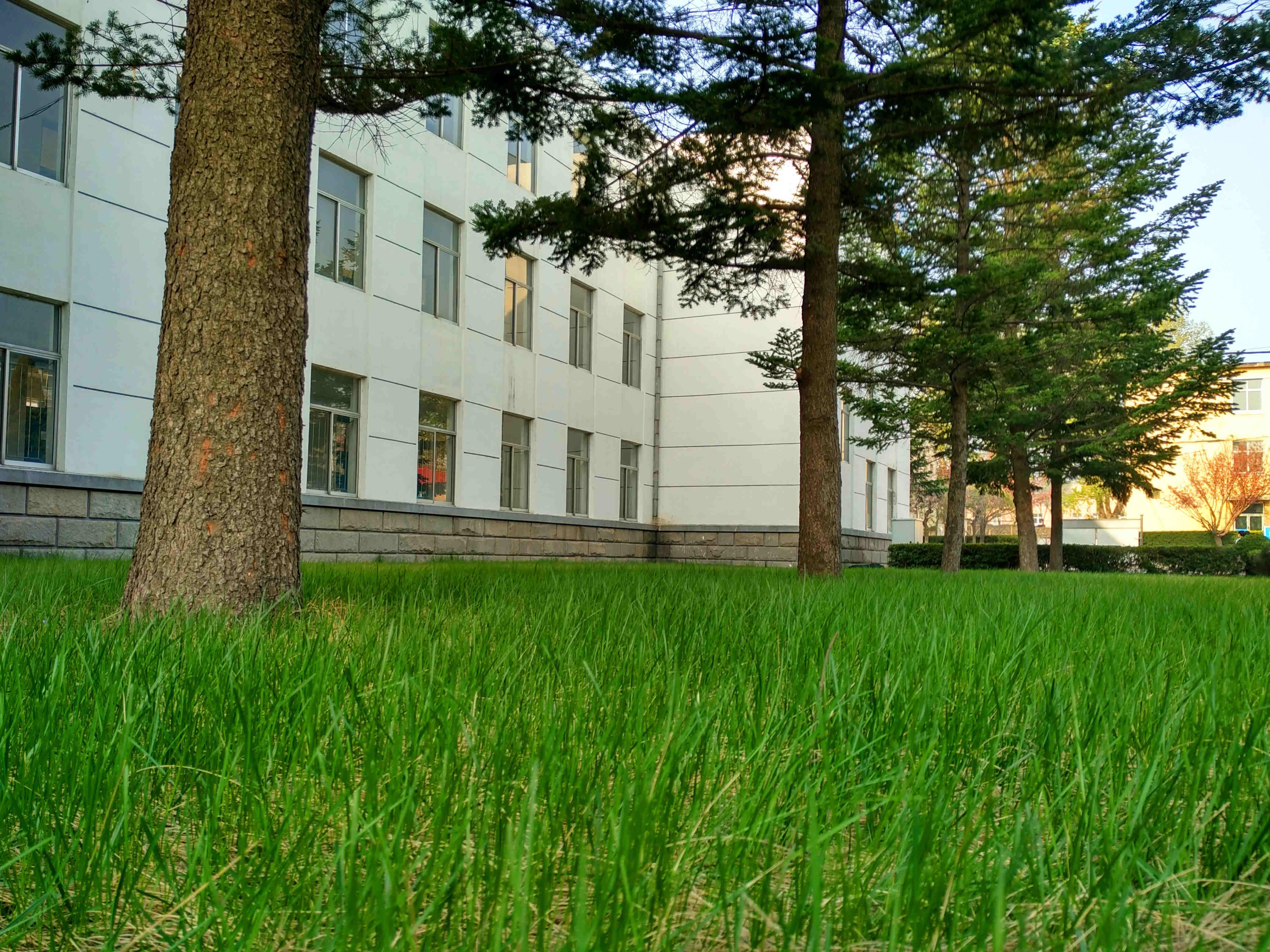 大连海洋大学应用技术学院电气与信息工程系迎